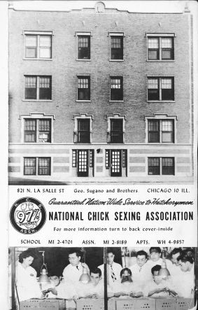 1949 Chicago Japanese American Year Book NCSA Ad w Bldg.jpg