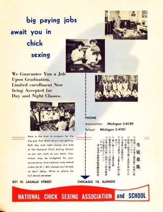 1951 Pictorial Guidebook National Chick Ad.jpg